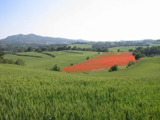 La Vall del Corb, La Conca de Barberà