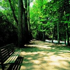 Parc dels Enamorats