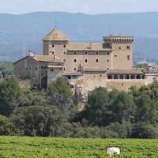 Castell Riudabella General