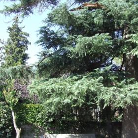 Torre Granés Espinach - Casal Gent Gran