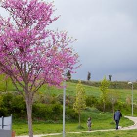 Parc de la Serreta