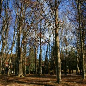 Parc Mare de Déu del Prat