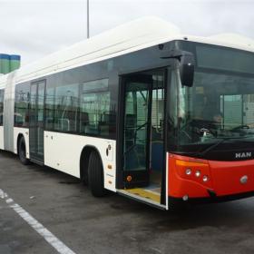 Bus - UT60