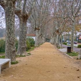 Pesquera Prat